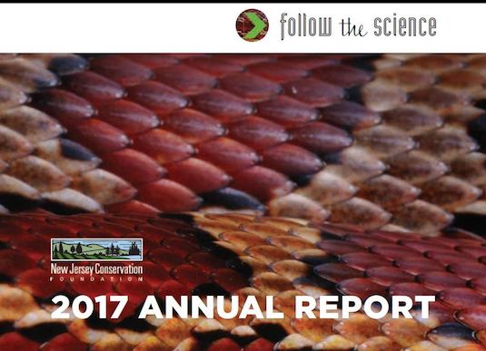 2017 Annual Report Cover, Snake Close-up