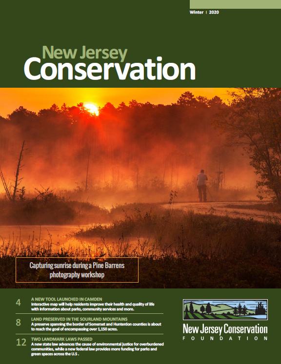 Winter 2020 newsletter cover